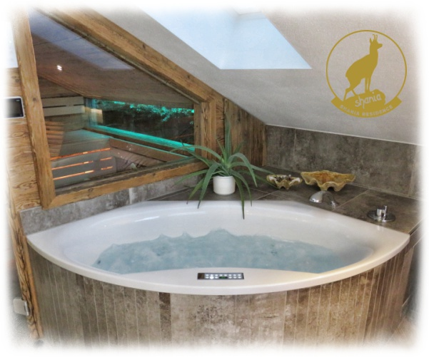 Wellness Bad Luxusferienwohnung Whirlpool